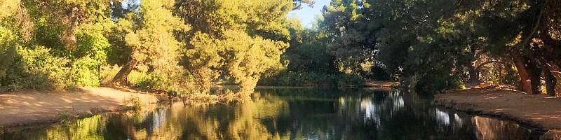 Debs Pond