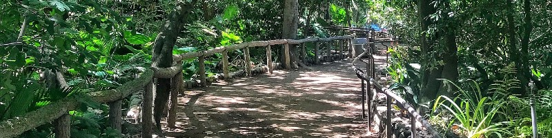 Fern Dell Nature Trail