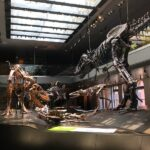 Natural History Museum 08