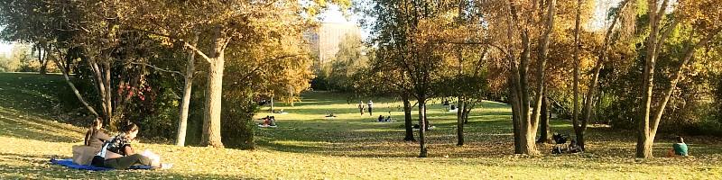 Vista Hermosa Park
